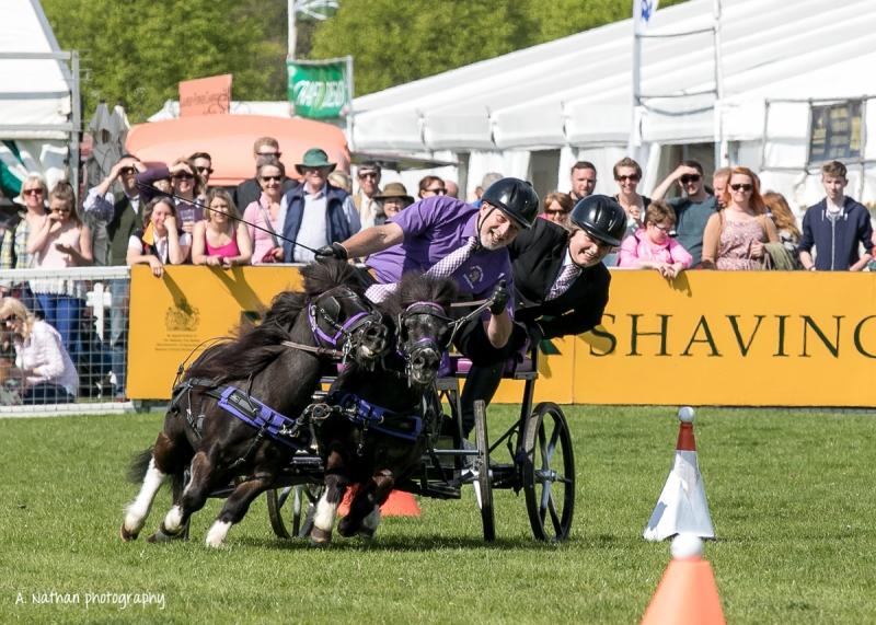 Horse trials-94